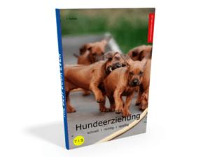 Hundeerziehung eBook PDF